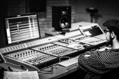 Swamp studio console